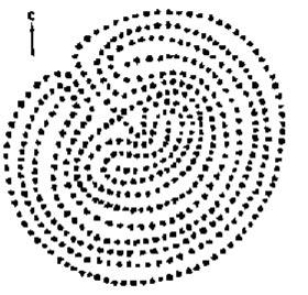 Схема большого лабиринта на Б. Заяцком острове (Соловецкие острова)