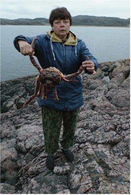 Вспоминая рыбалку в Кандалакше...