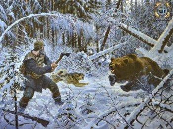 Медвежий жир в народной медицине